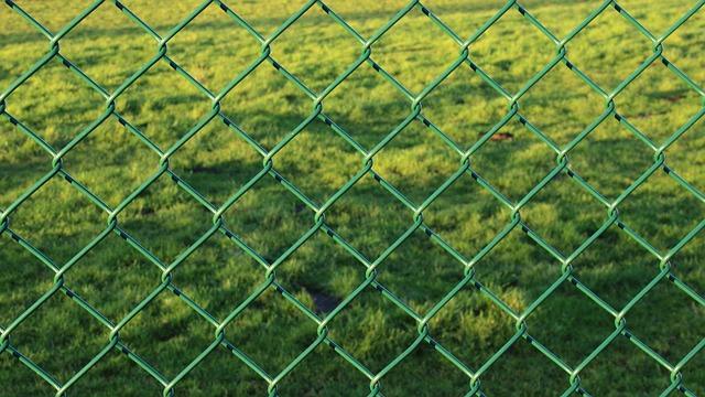 choosing-fence